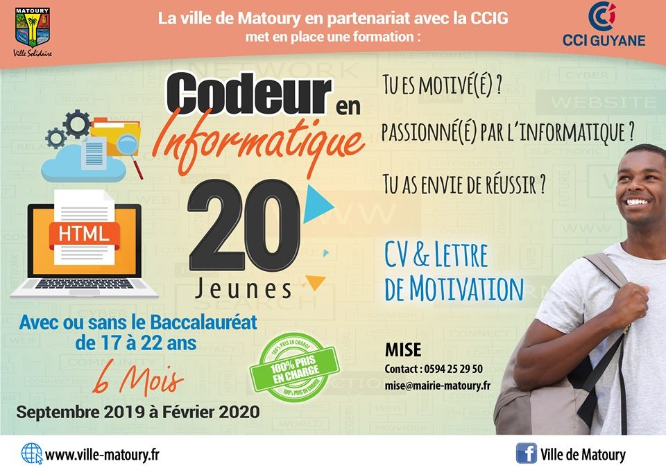 Formation insertion professionnelle